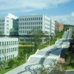 Du học Hàn Quốc nên chọn trường nào? Trường nào tốt nhất?